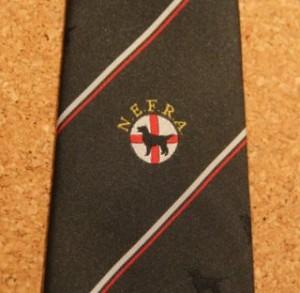 Green Tie detail £5